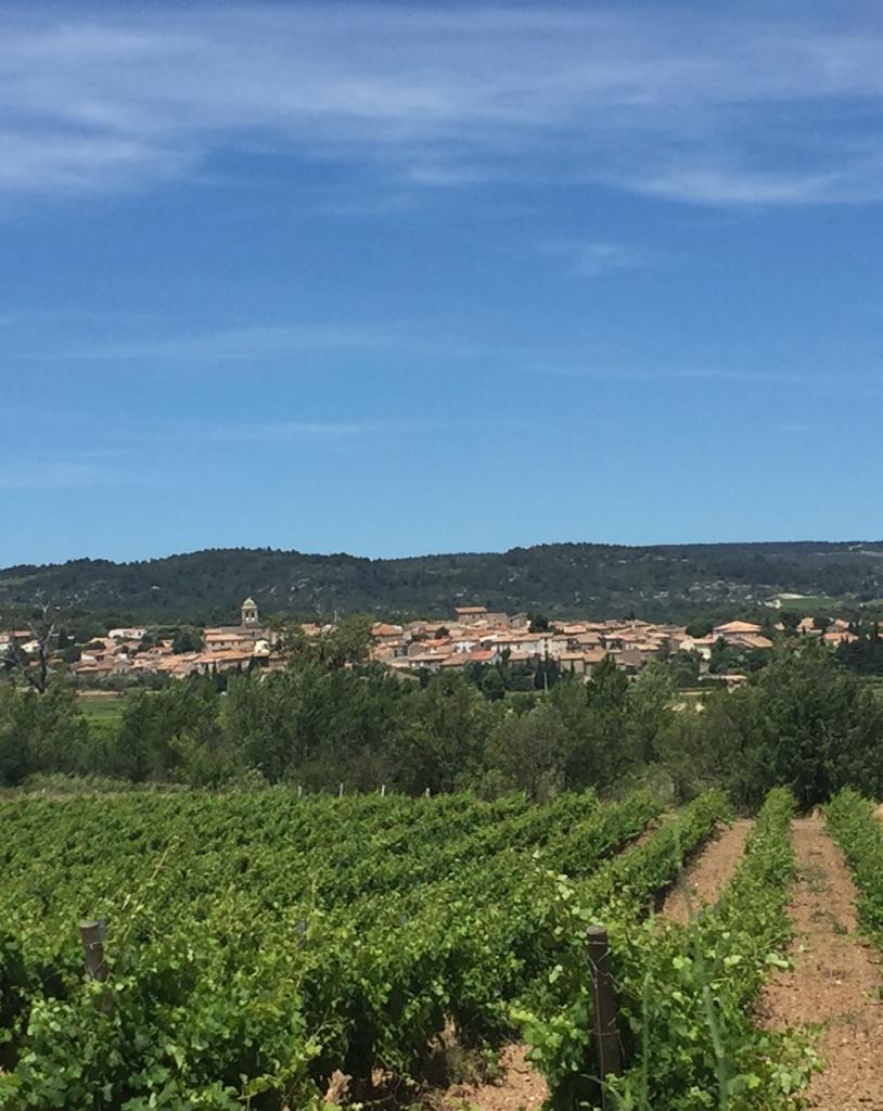 Domaine de la Senche - village