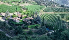 Quinta De Covela_vineyards_Yes