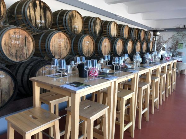 The tasting room of the Quinta Do Piloto