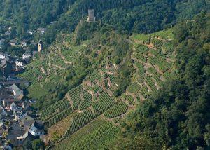 Terrassenweingut Dötschhaupt_aerial viewof vineyard_3