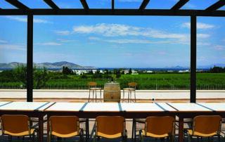 Triantafyllopoulos Winery_outdoor tasting area_4