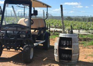 Viña Edén__Golf cart and vineyard