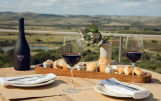 Viña Edén_wine tasting in the terrace
