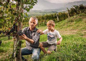 Vina Poljšak__among the vines_Yes
