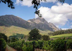 Delheim - garden and mountains