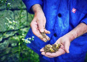 Vier Jahreszeiten Winzer - mud in hand