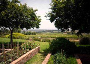 Longridge - garden and vineyard