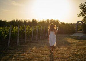 Baraka Winery - walk in the vineyard