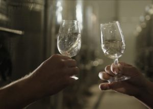Tipchenitza Winery - tasting