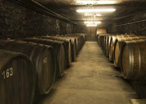 Weingut Selbach-Oster_SO Cellar 9_8