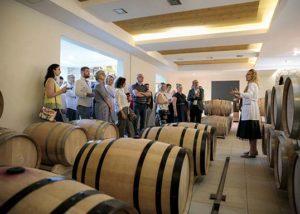 Winery Jeremic_barrel room_4