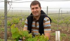Domaine Deprade Jorda - taking care of the vines