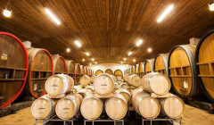 affentaler modern wine cellar with wooden barrels and large wooden tanks