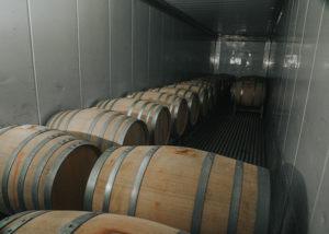 attilio & mochi many wooden barrels for wine aging in the wine cellar
