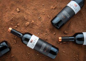 Tenuta Luisa bottle of wine laying on a ground