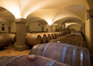 cellar of Tenuta Luisa winery full of barrels in Italy