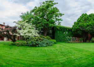 Tenuta Villanova garden where you can enjoy nature and taste wines