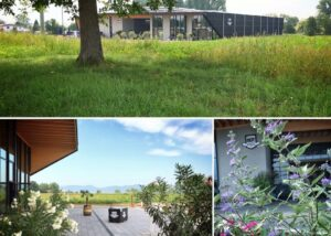 bergdolt-reif & nett collage of the courtyard and flowers near estate