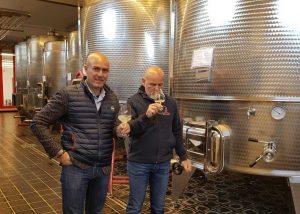 Tenuta Di Castellaro wine tasting from tanks during winemaking process