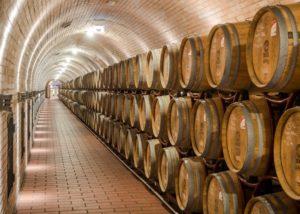 bock estate unique wine cellar with many wooden barrels for wine tasting