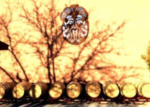 bodega sarmentero wooden barrels for wine aging near winery in spain