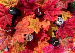bodega sarmentero wine bottles amid red leafs near winery in spain