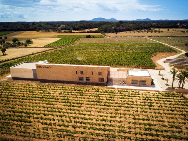 huge Bodega Son Juliana vineyard in Spain