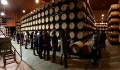 Bodegas Fernández de Piérola winery cellar tour in Spain