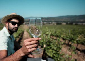 bodegas godelia winemaker tasting unique wine in the vineyard near winery