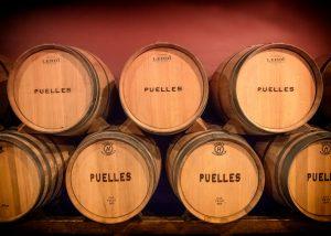 bodegas puelles wooden barrels of wine inside wine cellar in the winery