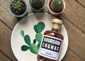 The cactus and Cognac at Bourgoin Cognac