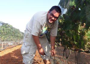can calopa de dalt winemaker near grapevine on vineyard near winery