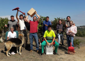 can calopa de dalt winemakers team on vineyard near winery in spain