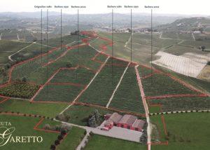 Tenuta Garetto vineyard overview in Italy
