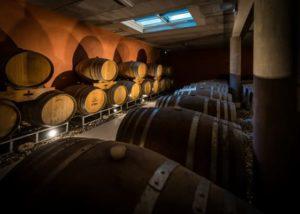 Mas Gourdou - barrel cellar