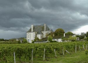 Château de Chaintres - Landscape with vineyard and castle