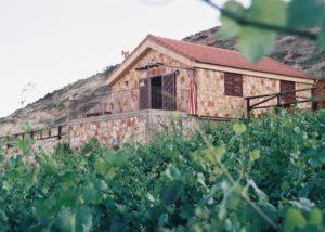 coteaux du liban amazing stone estate and vineyards in lovely lebanon