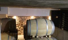 crivellé i valls modern wine cellar with many wooden barrels for wine