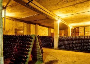 Rinaldini az Agr Moro winery cellar full of bottles with wine