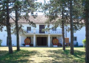 Trees and the entrance to the striking estate of the winery Marco Skolaris.