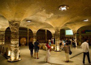Tenuta Di Castellaro wine tasting inside cellar in Italy