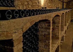 Roncolo 1888 Venturini Baldini winery cellar with bottles of wine inside