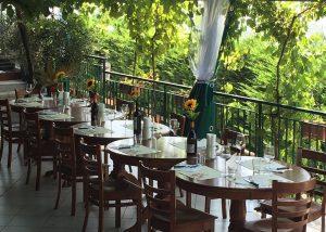 Sorrentino Vesuvio wine tasting place located in Italy