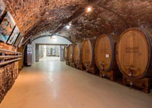 domäne wachau lovely wine cellar with many large wooden barrels