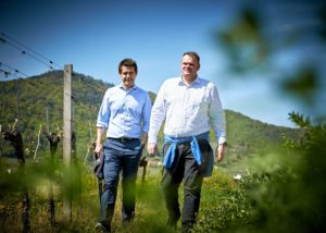 domäne wachau two winemakers stroll through lush vineyards near winery