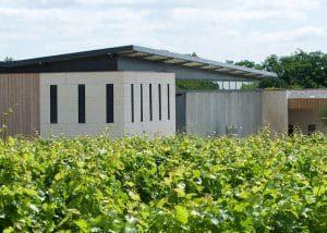Domaine de Rocheville - Loire - Winery with vineyards