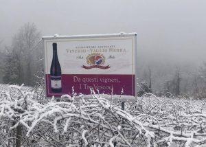 winery Viticoltori Associati di Vinchio Vaglio Serra in winter season