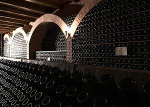Fully stocked wine racking at the amazing Cantina Ricchi winery.