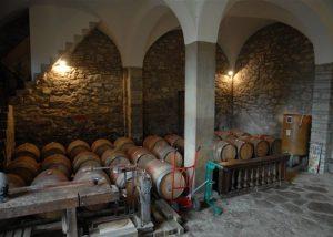 Tenuta Monte Gorna winery cellar full of barrels located in Italy