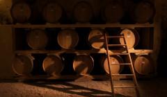 castel di salve wine cellar full of wooden barrels for wine aging